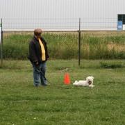 Winnaar Puppy, Anita & Mica