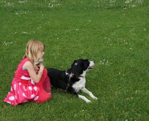 Kind Hond Show foto Martin van 't Root