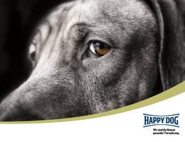 Happy Dog sponsor