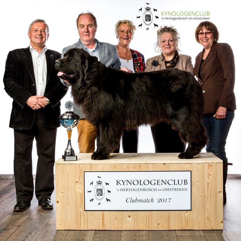 Best In Show clubmatch 2017 Kynologenclub 's-Hertogenbosch e.o.