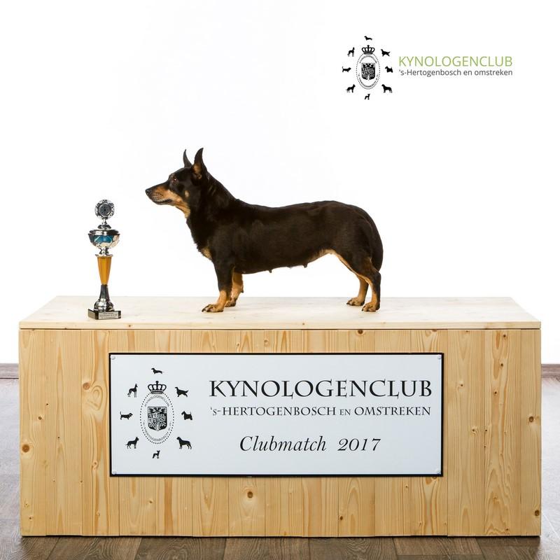 Beste veteraan clubmatch KCDB 2017